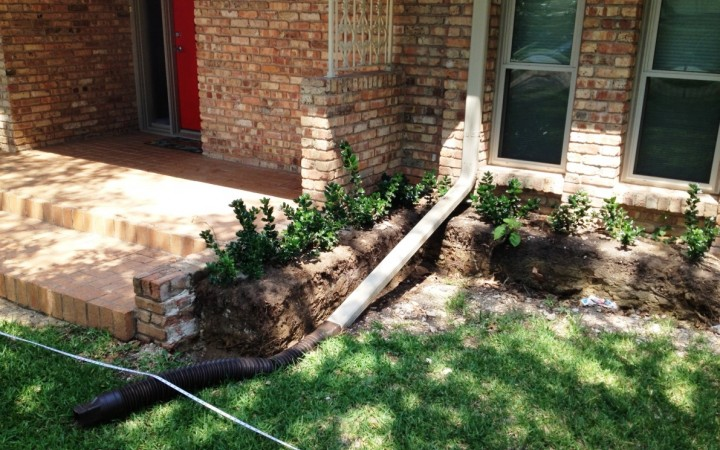 Water-wise Front Yard Renovation