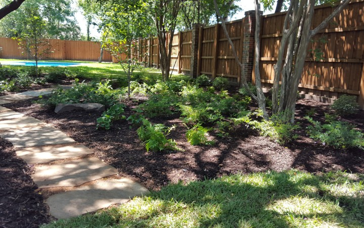 A Shady Barren Landscape Gets a Natural Makeover